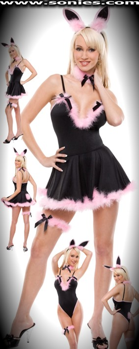 Bunny costume: teddy, skirt, ears, choker and leg garter set